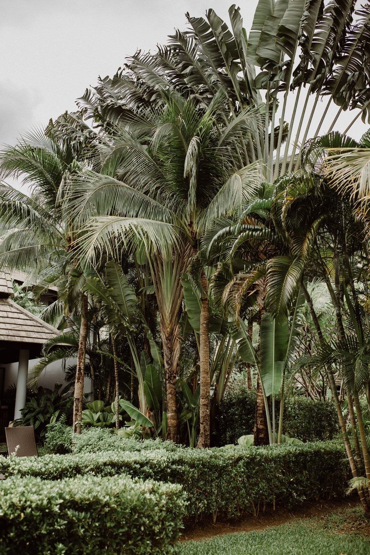 wedding marriott resort phuket